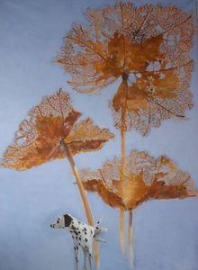 Fabienne Colin -  - Wanddekoration