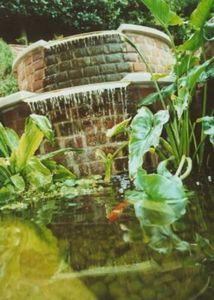 Frognal Gardens -  - Wasserfall