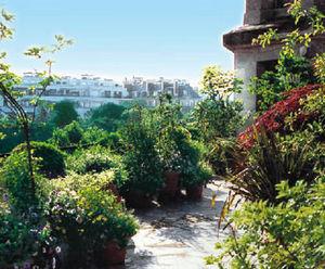 Horticulture Et Jardin -  - Gestalte Terasse