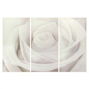 MAISONS DU MONDE - triptyque rose blanche - Zeitgenössische Gemälde