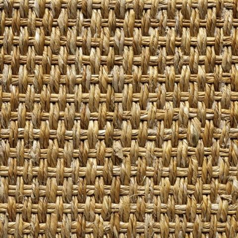 Artirec - Seegras-Artirec-Panama fin