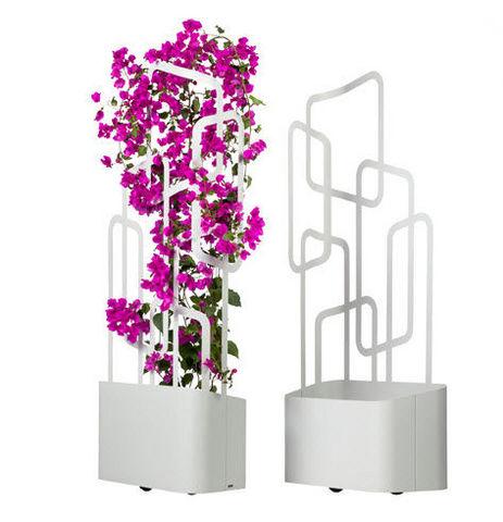 Flora - Blumenkasten mit Spalier-Flora-Paro