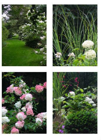 DRAW ME A GARDEN - Landschaftsgarten-DRAW ME A GARDEN-Jardin Anglais