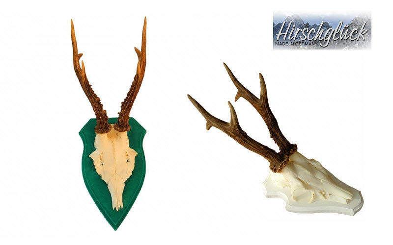Hirschglück Cornamenta ornamental Taxidermia y trofeos de caza Ornamentos  |
