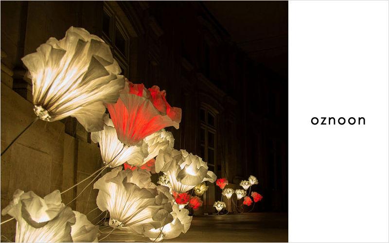 OZNOON Escultura luminosa Piezas de arte & ornamentos varios Ornamentos  |