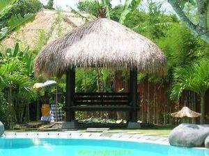 Jungle Spirit Cabaña de paja