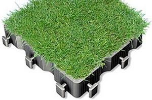 Ecovegetal Losa vegetalizada
