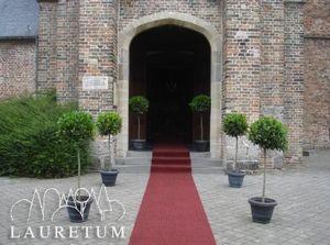 LAURETUM -  - Decoración De Eventos