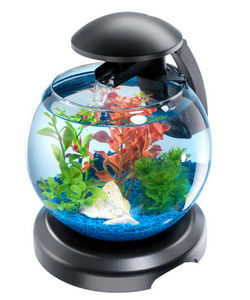 Tetra - aquarium tetra cascade globe 6.8 litres - Acuario