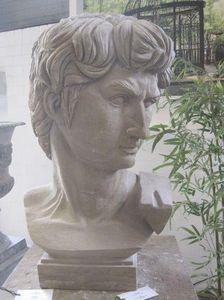 Livingstone Terrasso - david - Busto