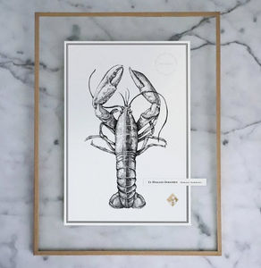 J.L L'ATELIER - le homard européen - Dibujo Con Tinta