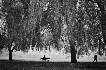 ALEX ARNAOUDOV - hampstead autumn - Fotografia