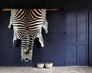 LODGE COLLECTION -  - Pelle Di Zebra