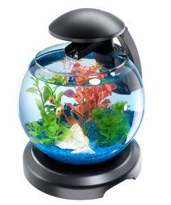 Tetra - aquarium tetra cascade globe 6.8 litres - Acquario