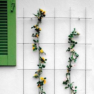 BAUHAUS -  - Grigliato Decorativo