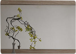 COMFORIUM - miroir en bois pour hall d'entrée - Specchio